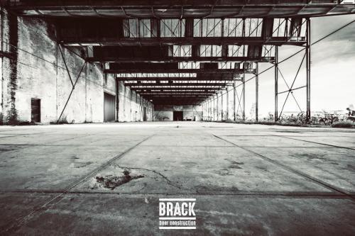 BRACK roblipsius--11