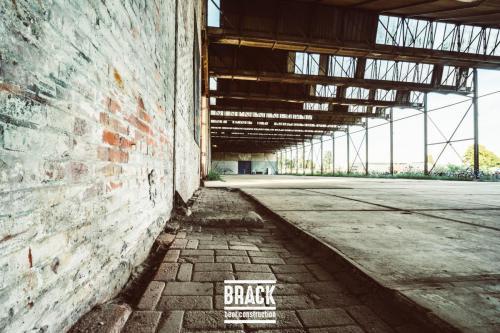 BRACK roblipsius--16