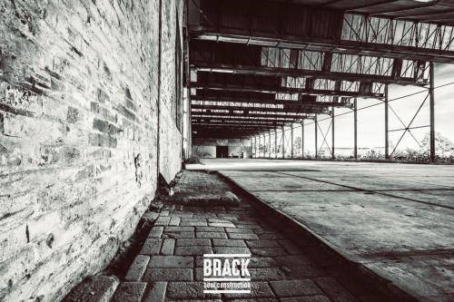 BRACK roblipsius--17