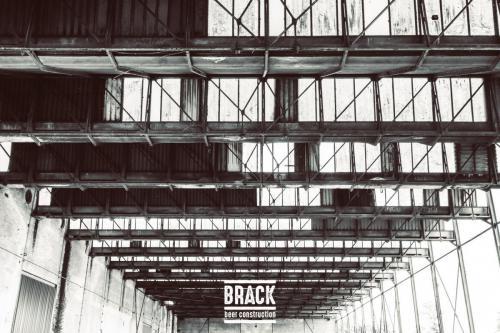 BRACK roblipsius-06007-2