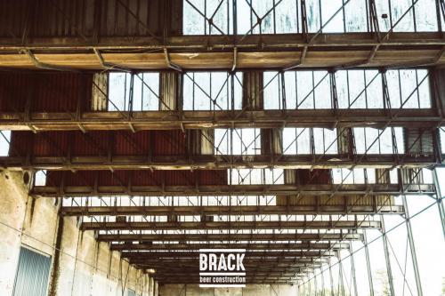 BRACK roblipsius-06007