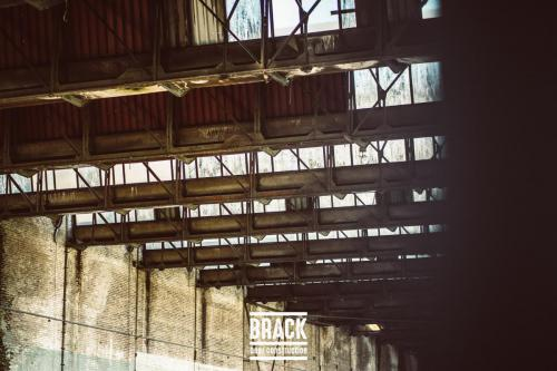 BRACK roblipsius-06082