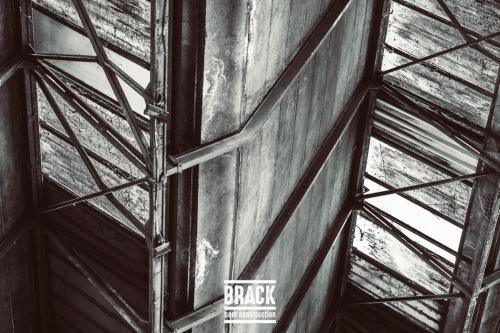 BRACK roblipsius-06095-2