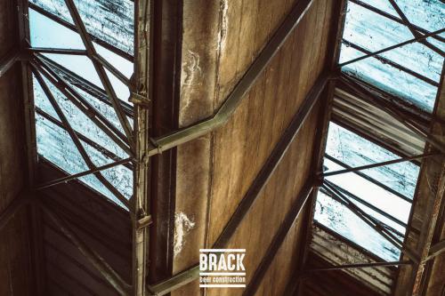 BRACK roblipsius-06095