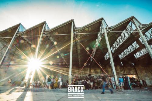 BRACK roblipsius-06119